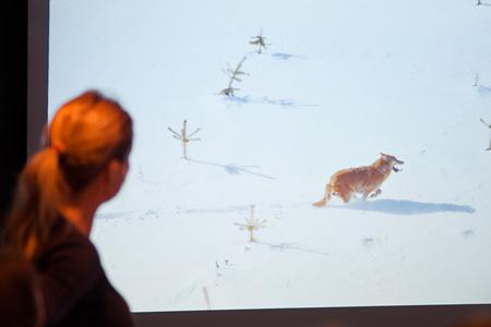 © 2011 Naturvårdsverket.